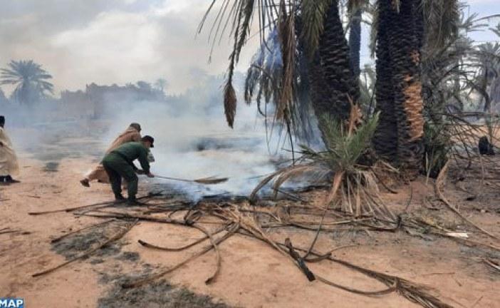 حريق يأتي على أعداد كبيرة من النخيل بواحة تيغمرت بكلميم